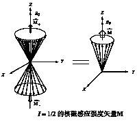 I=1/2时的核磁化强度矢量M