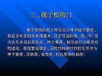 古生物地史学_孙柏年_古植物-裸子植物电子课件