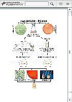 食品微生物检验技术_覃文_金黄色葡萄球菌检验程序